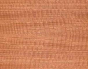 Fussboden Tirp Holzarten